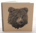 Bear Explorer Journal