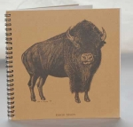 Buffalo Explorer Journal
