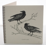 Raven Explorer Journal