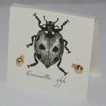 Ladybug Natural History Earrings - gold