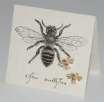 Bee Natural History Earrings - gold