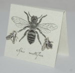 Large Bee Natural History Earrings - silver