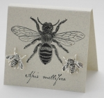 Bee Natural History Earrings - silver