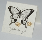 Butterfly Natural History Earrings - gold